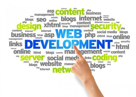 Website Development flexus solutions